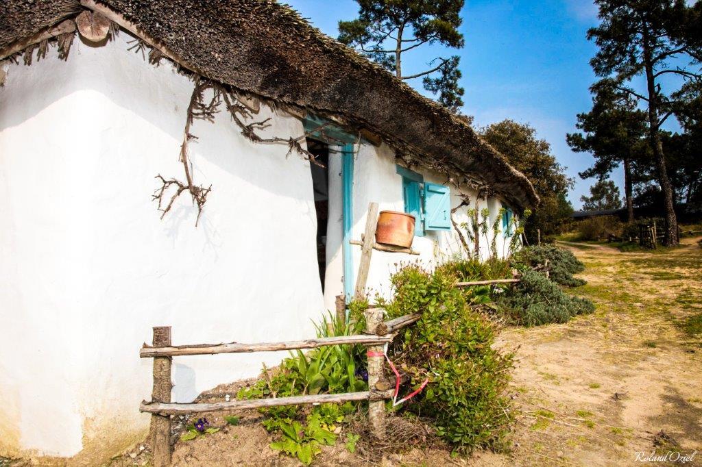bourrine du bois juquaud Vendée