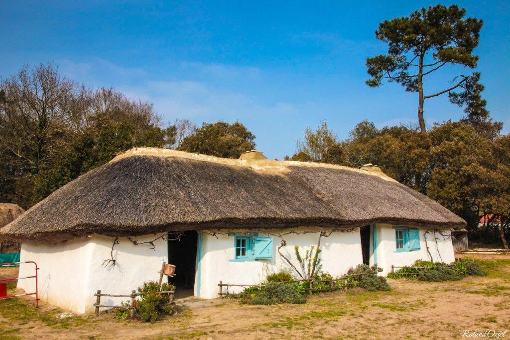 bourrine du bois juquaud en Vendée